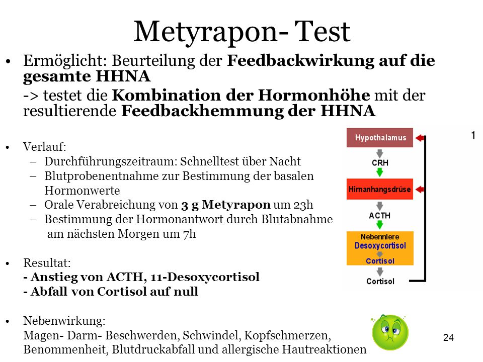 Metyrapon- Test Ermöglicht: Beurteilung der Feedbackwirkung auf die gesamte HHNA.