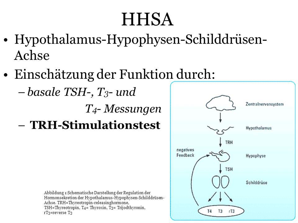 HHSA Hypothalamus-Hypophysen-Schilddrüsen-Achse