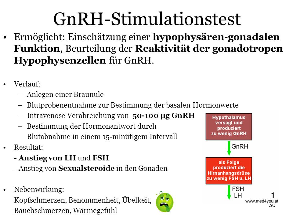 GnRH-Stimulationstest