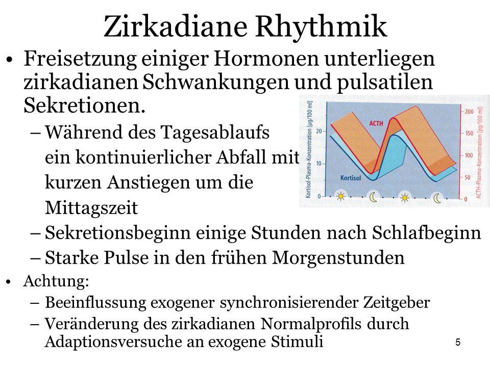 Zirkadiane Rhythmik Freisetzung einiger Hormonen unterliegen zirkadianen Schwankungen und pulsatilen Sekretionen.
