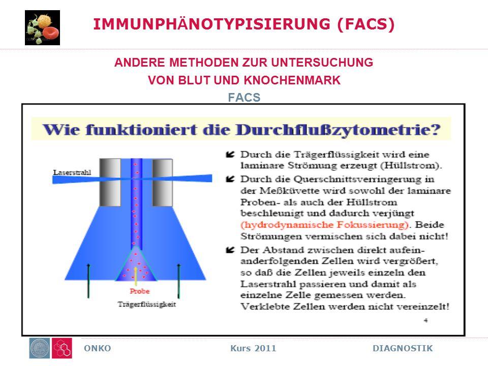 IMMUNPHÄNOTYPISIERUNG (FACS)