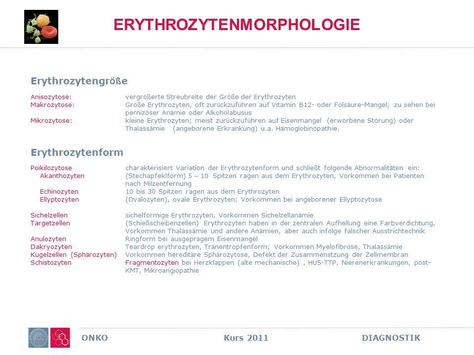 ERYTHROZYTENMORPHOLOGIE