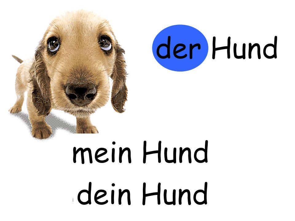 der Hund mein Hund m…… Hund dein Hund d…… Hund