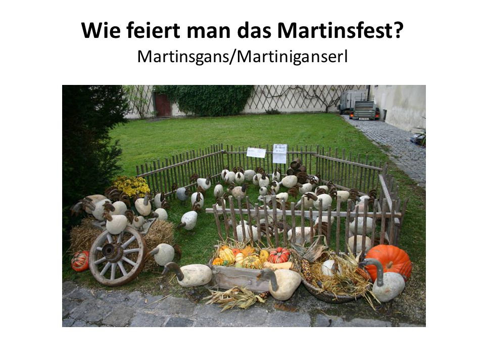 Wie feiert man das Martinsfest Martinsgans/Martiniganserl