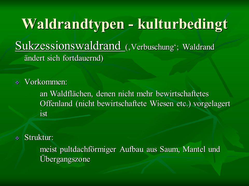 Waldrandtypen - kulturbedingt
