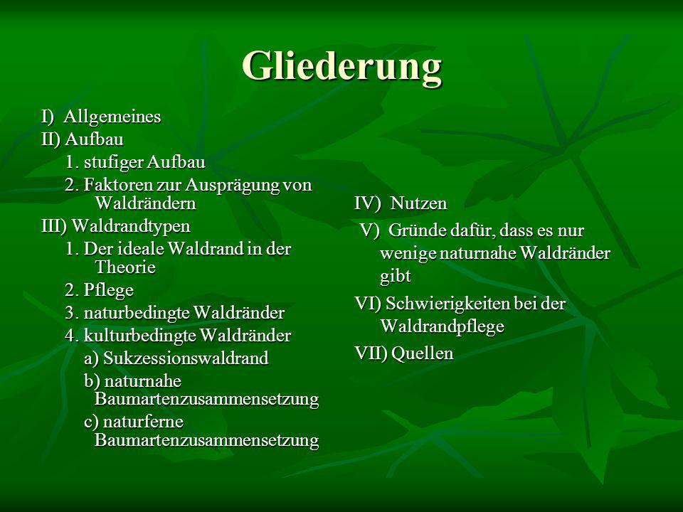 Gliederung I) Allgemeines II) Aufbau 1. stufiger Aufbau