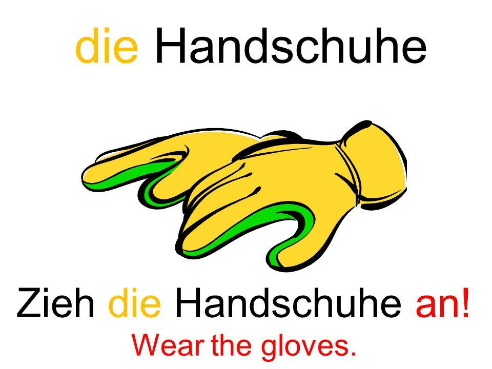 die Handschuhe Zieh die Handschuhe an! Wear the gloves.