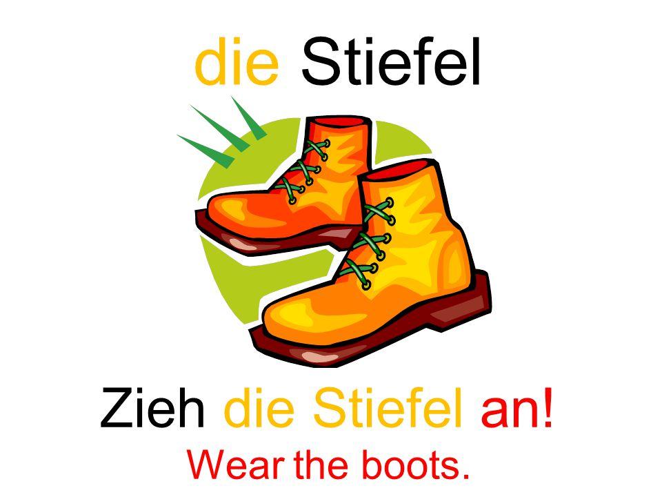 die Stiefel Zieh die Stiefel an! Wear the boots.