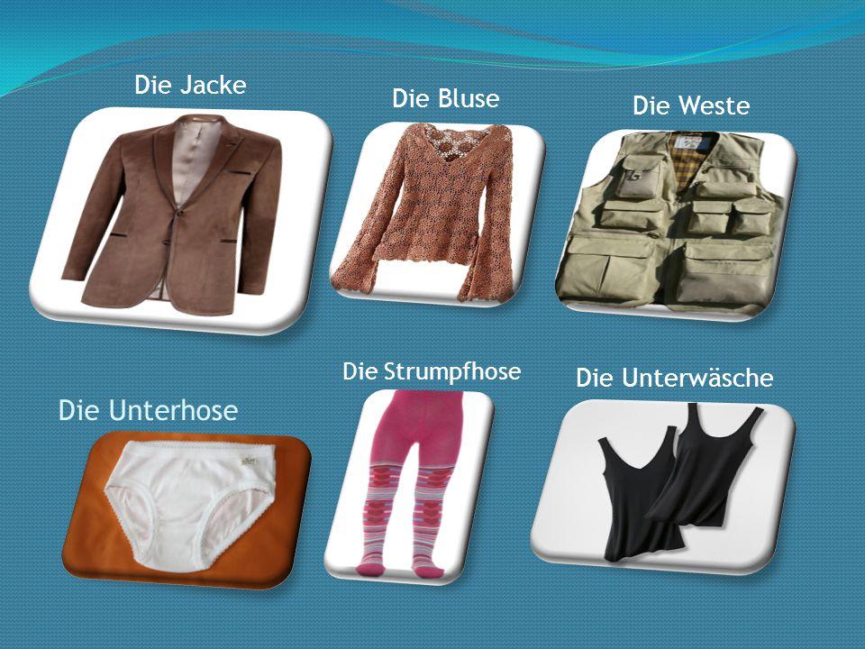 Die Unterhose Die Jacke Die Bluse Die Weste Die Unterwäsche