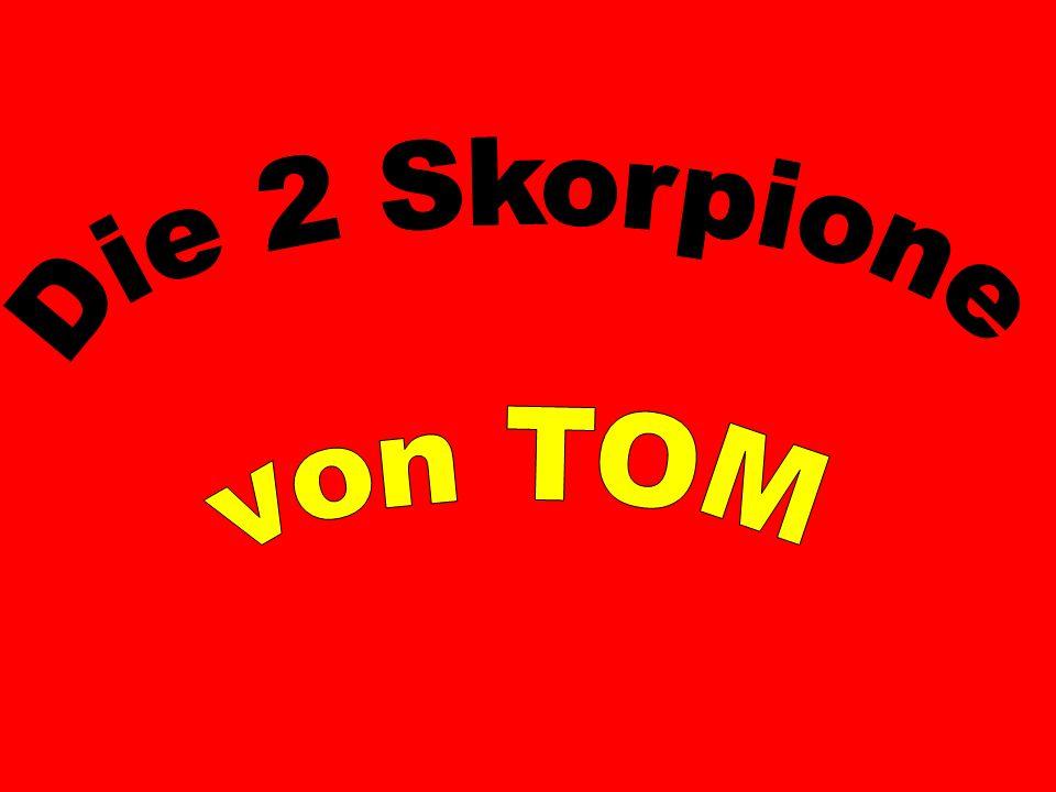 Die 2 Skorpione von TOM