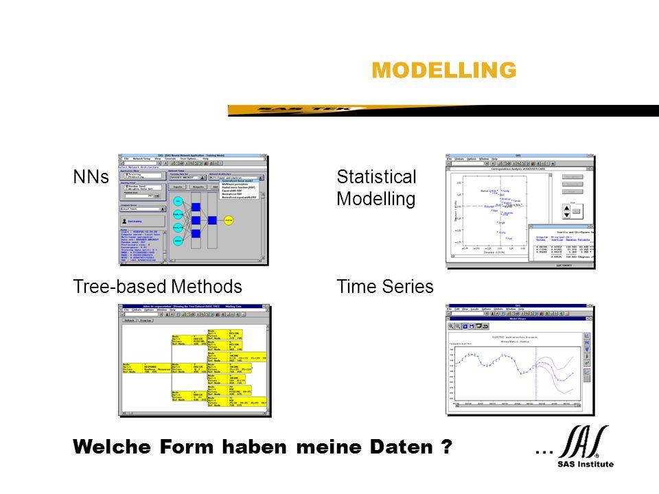 MODELLING Welche Form haben meine Daten ... NNs Statistical