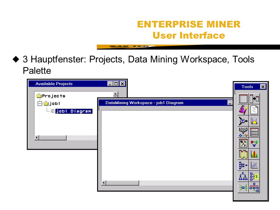 ENTERPRISE MINER User Interface