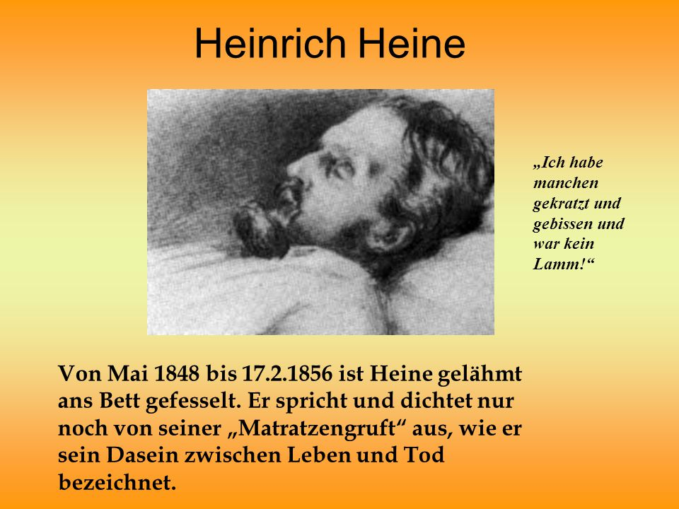 """Heinrich Heine """"Ich habe manchen gekratzt und gebissen und war kein Lamm!"""