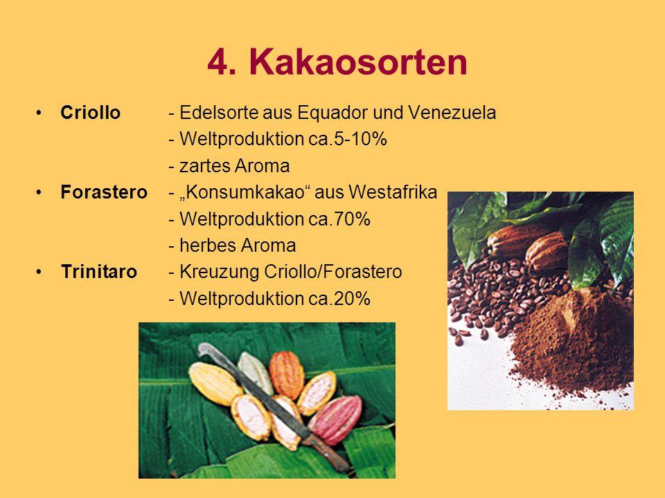 4. Kakaosorten Criollo - Edelsorte aus Equador und Venezuela