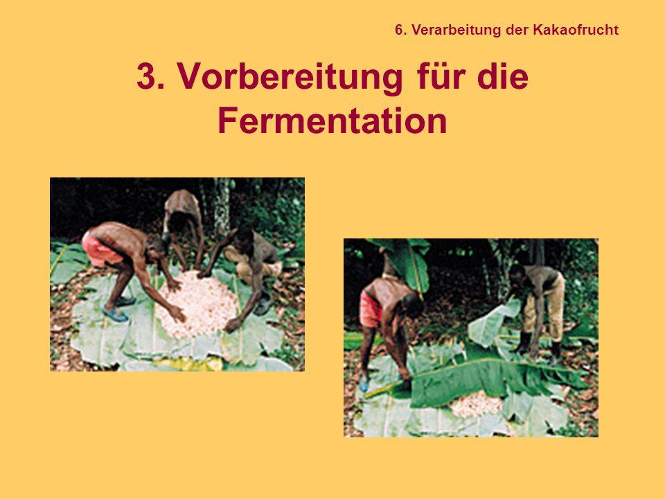 3. Vorbereitung für die Fermentation