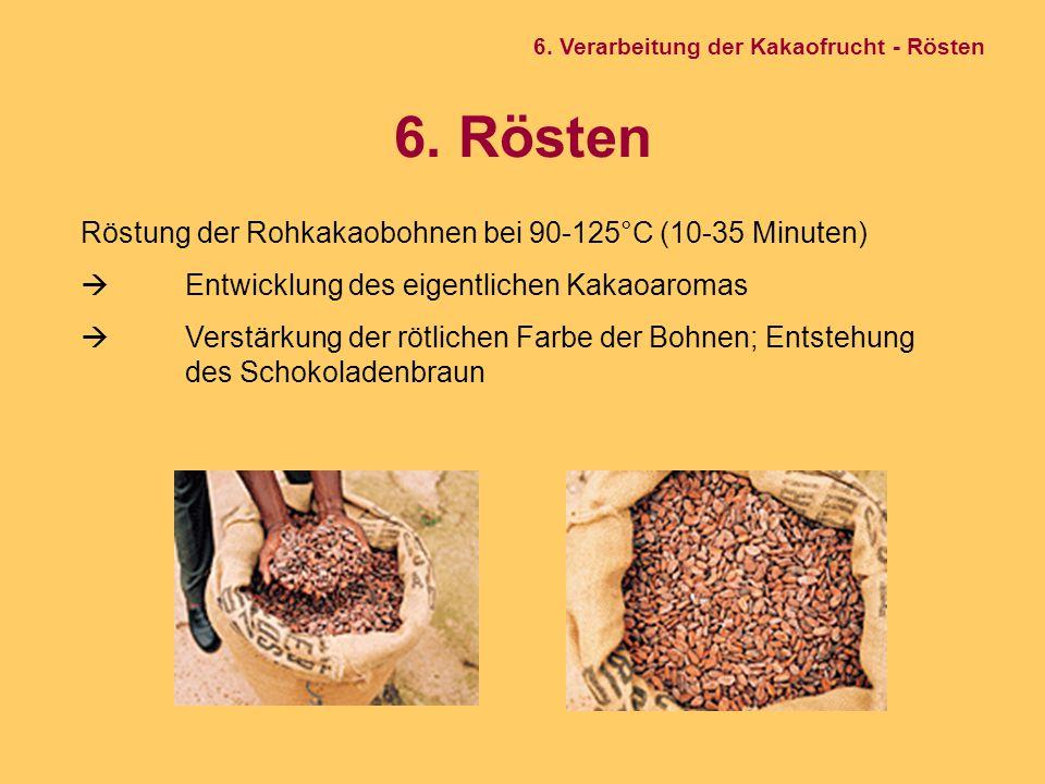 6. Rösten Röstung der Rohkakaobohnen bei 90-125°C (10-35 Minuten)