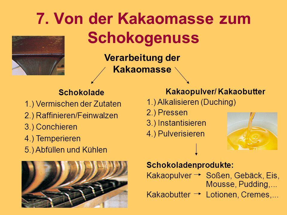 7. Von der Kakaomasse zum Schokogenuss