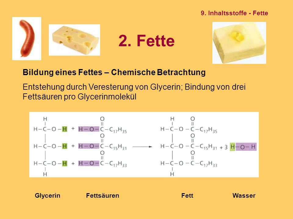 2. Fette Bildung eines Fettes – Chemische Betrachtung