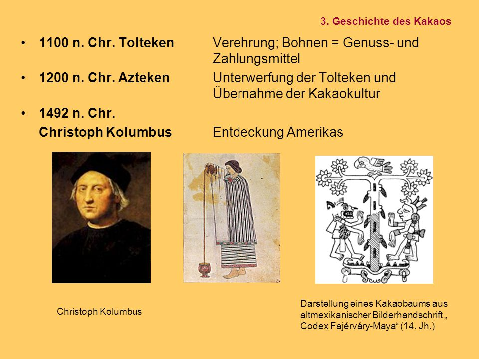1100 n. Chr. Tolteken Verehrung; Bohnen = Genuss- und Zahlungsmittel