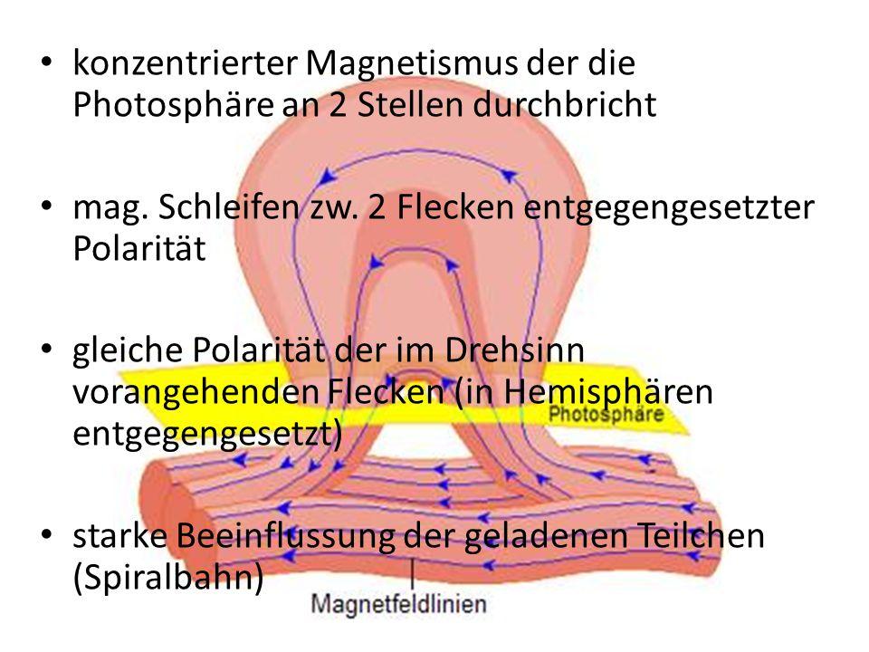 konzentrierter Magnetismus der die Photosphäre an 2 Stellen durchbricht