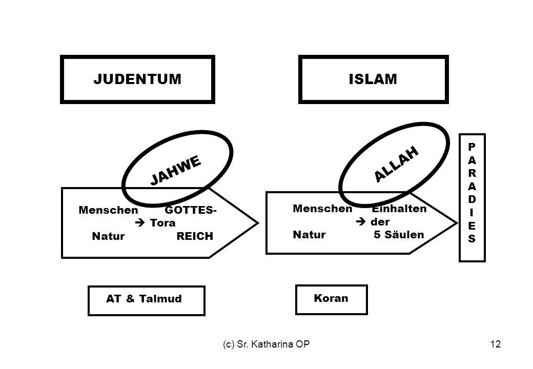 JUDENTUM ISLAM ALLAH JAHWE P A R D I E S Menschen GOTTES-  Tora