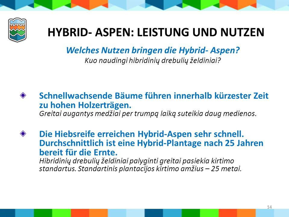Hybrid- Aspen: Leistung und Nutzen