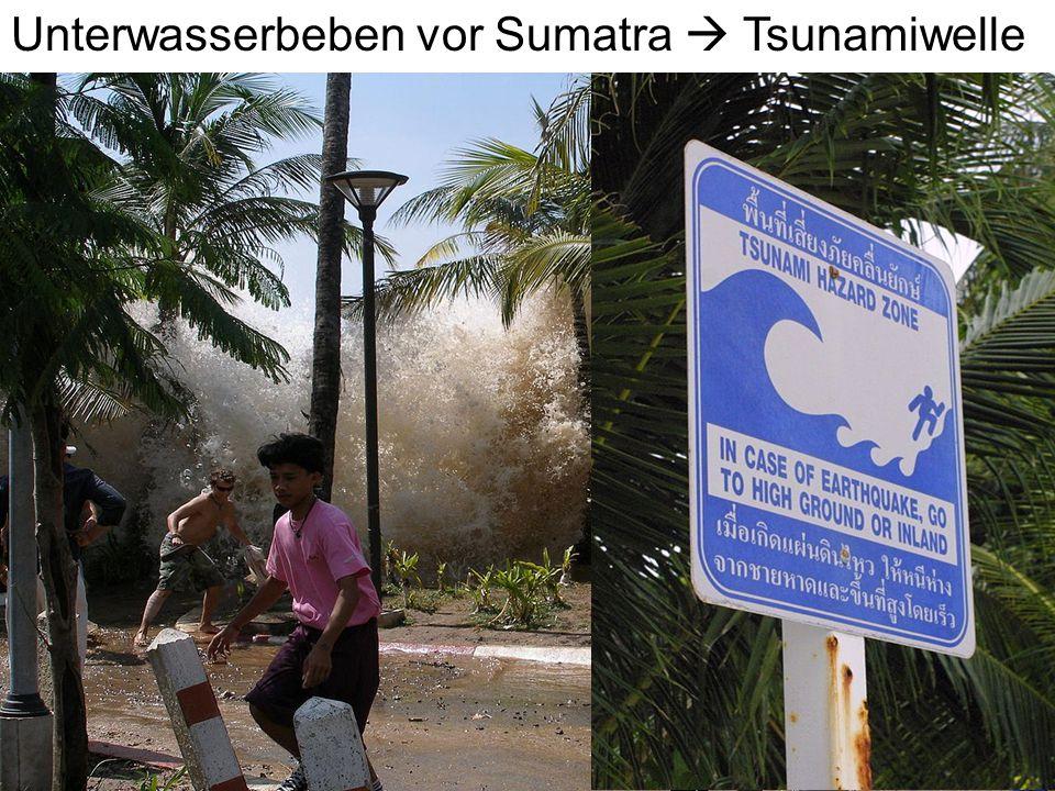 Unterwasserbeben vor Sumatra  Tsunamiwelle