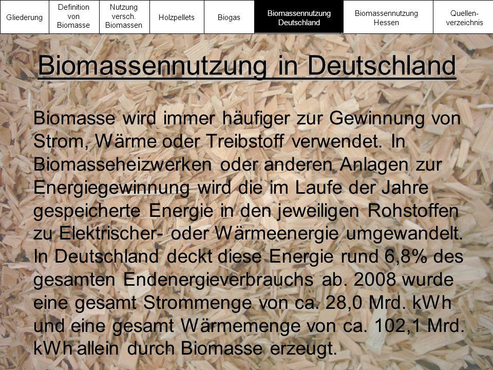 Biomassennutzung in Deutschland
