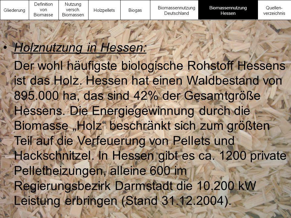 Holznutzung in Hessen:
