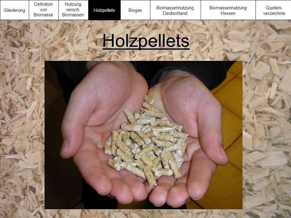 Holzpellets Gliederung Definition von Biomasse