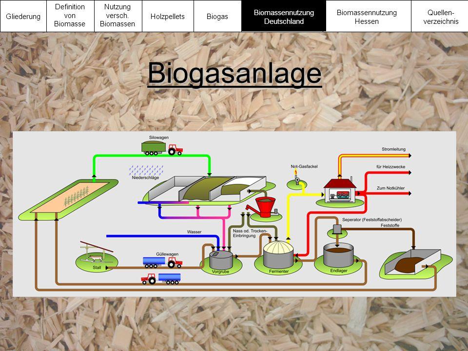 Biogasanlage Gliederung Definition von Biomasse