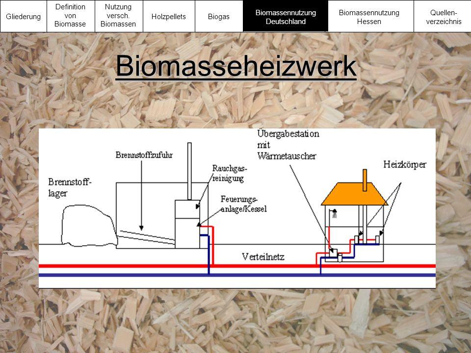 Biomasseheizwerk Gliederung Definition von Biomasse