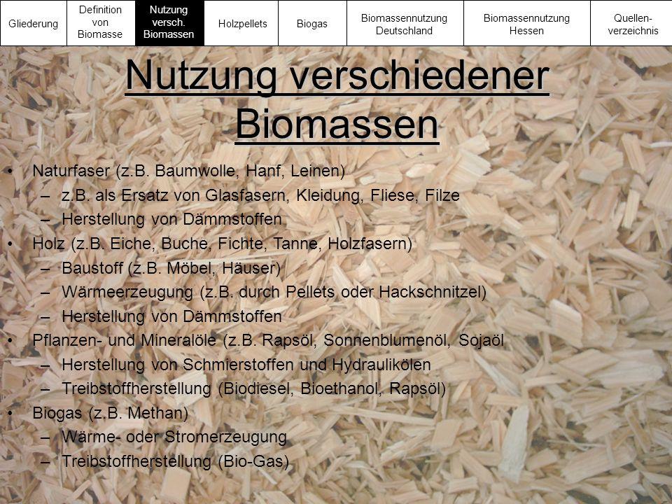 Nutzung verschiedener Biomassen