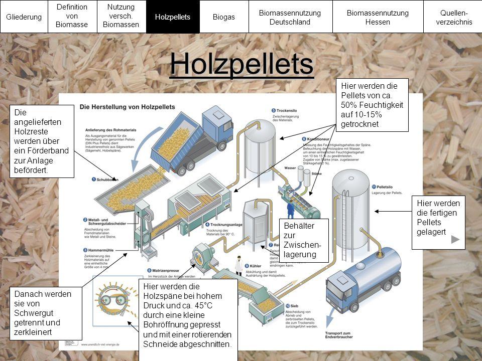 Gliederung Definition von Biomasse. Nutzung versch. Biomassen. Biomassennutzung Deutschland. Biomassennutzung Hessen.
