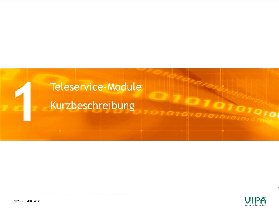 1 Teleservice-Module Kurzbeschreibung