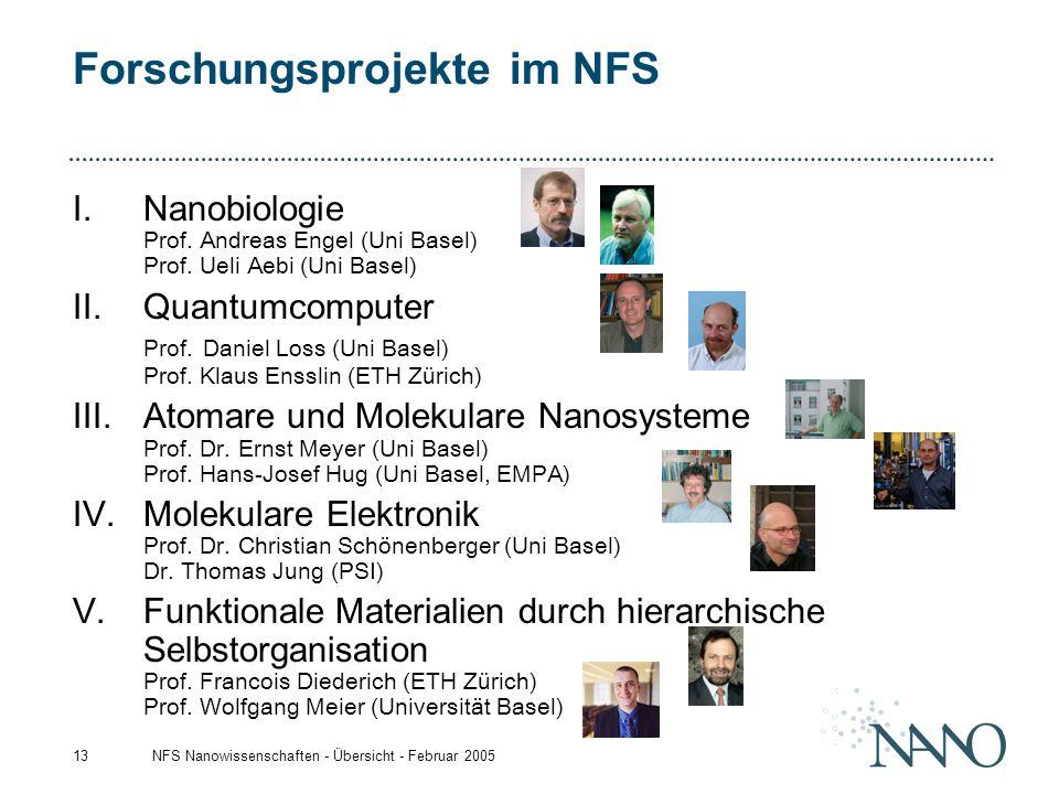 Forschungsprojekte im NFS