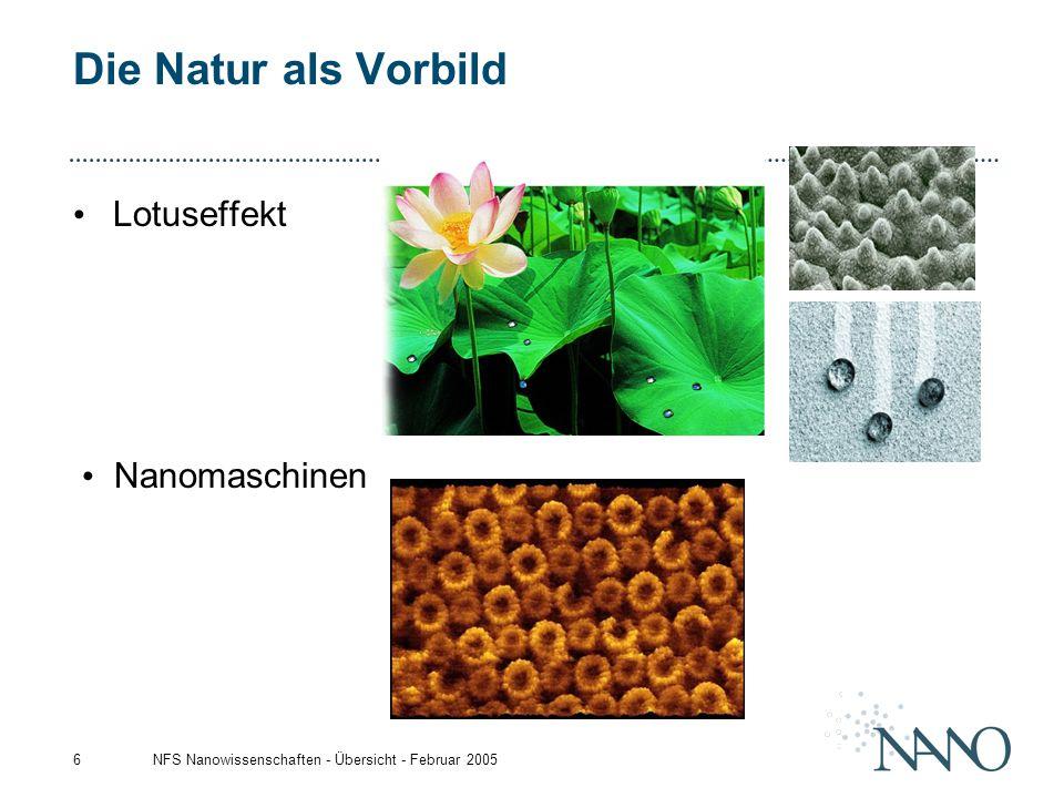 Die Natur als Vorbild Lotuseffekt Nanomaschinen