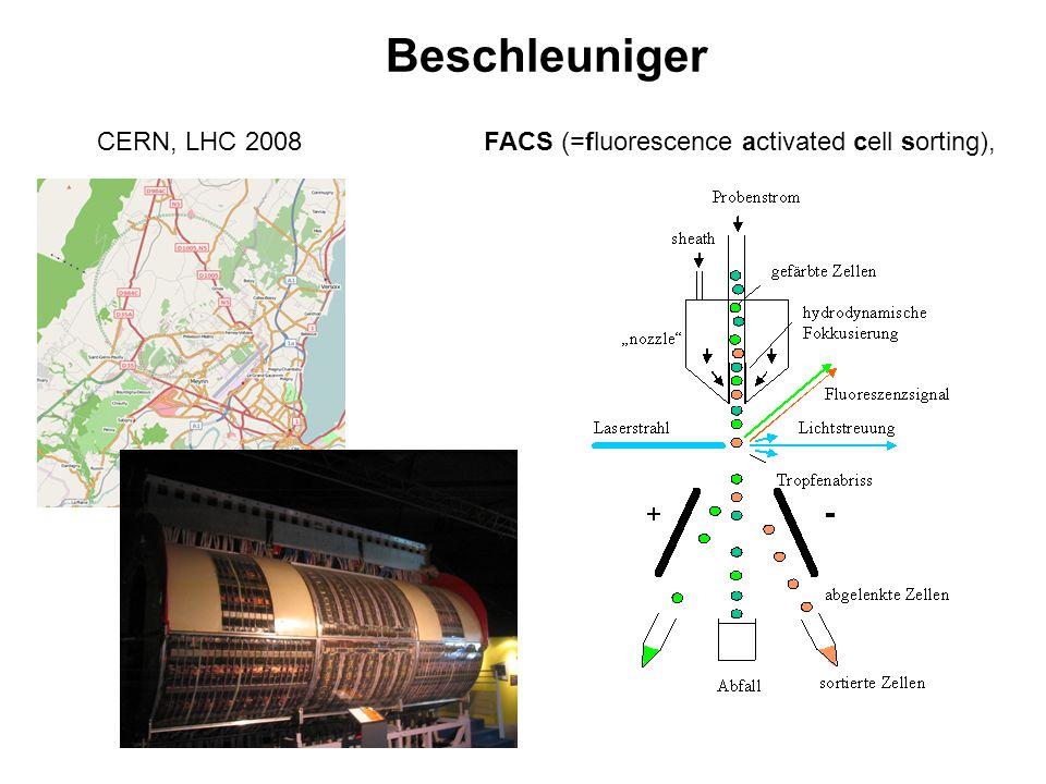 Beschleuniger CERN, LHC 2008