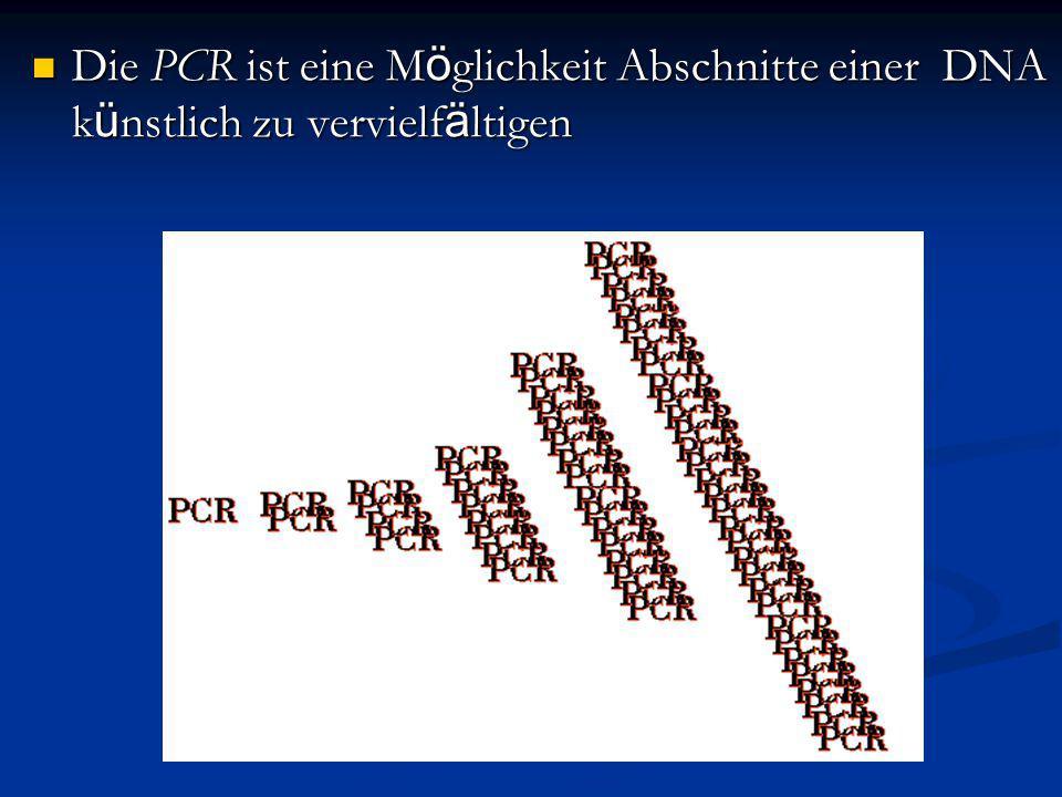 Die PCR ist eine Möglichkeit Abschnitte einer DNA künstlich zu vervielfältigen