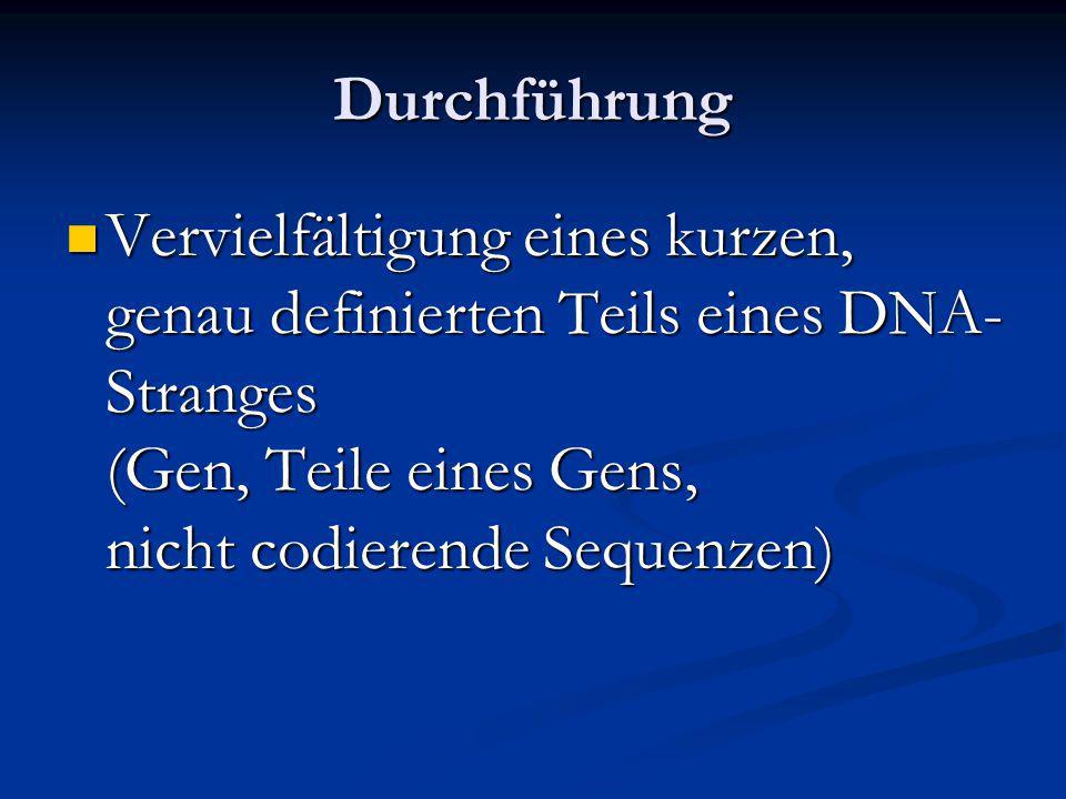 Durchführung Vervielfältigung eines kurzen, genau definierten Teils eines DNA-Stranges (Gen, Teile eines Gens, nicht codierende Sequenzen)