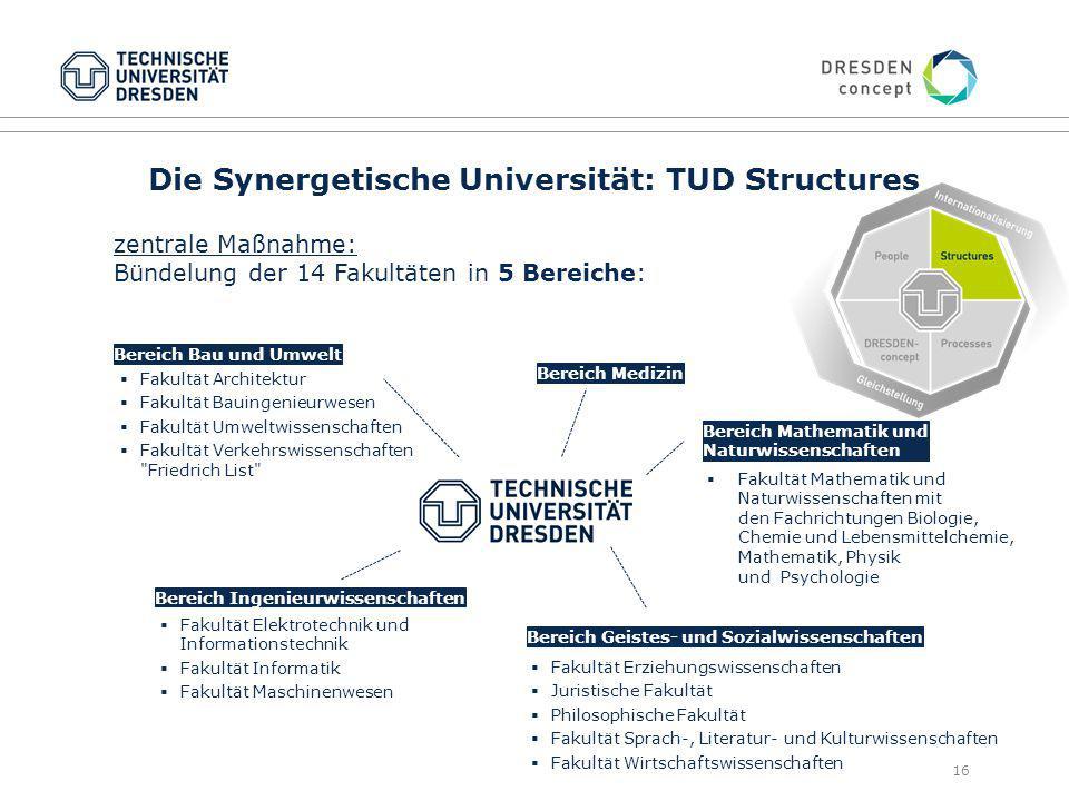 Die Synergetische Universität: TUD Structures