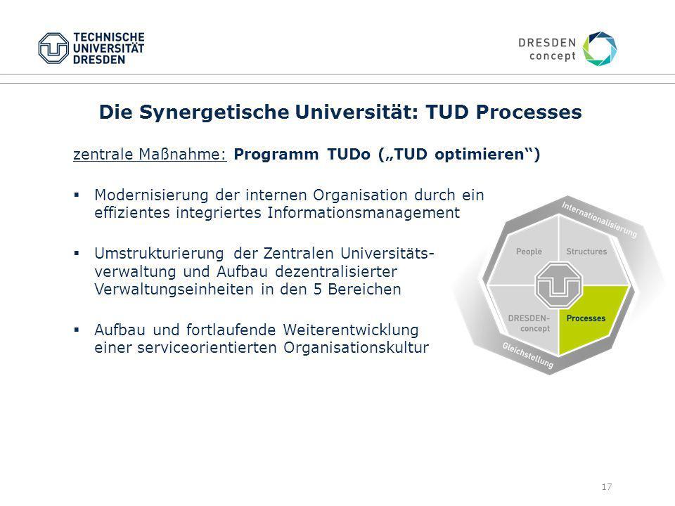 Die Synergetische Universität: TUD Processes