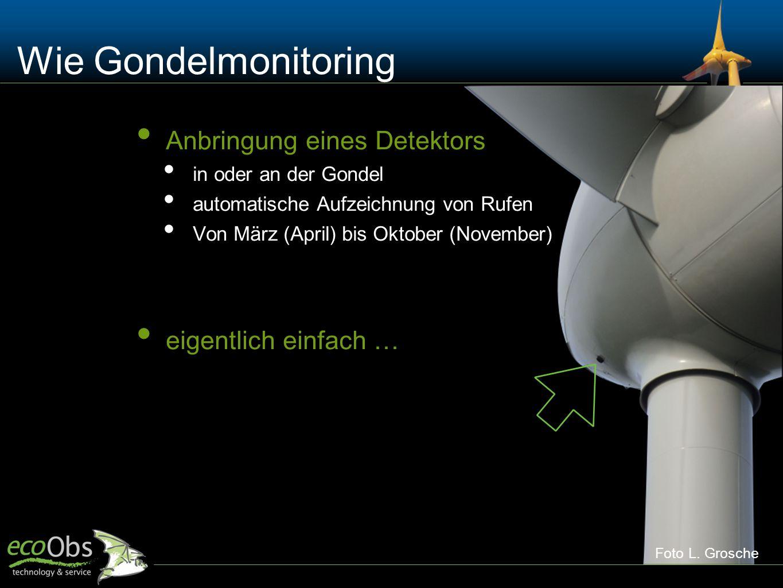 Wie Gondelmonitoring Anbringung eines Detektors eigentlich einfach …