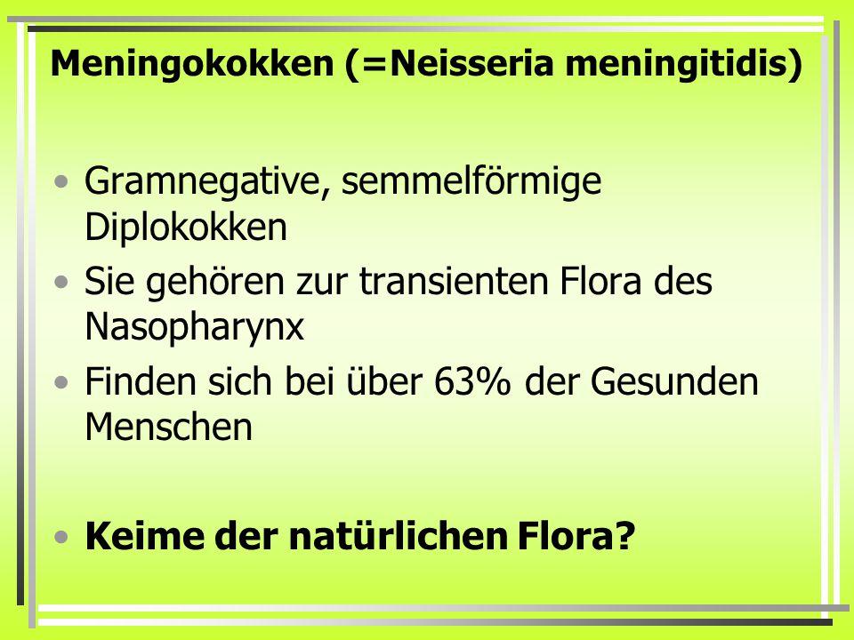 Meningokokken (=Neisseria meningitidis)