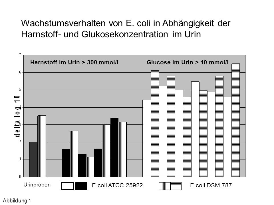 Wachstumsverhalten von E. coli in Abhängigkeit der