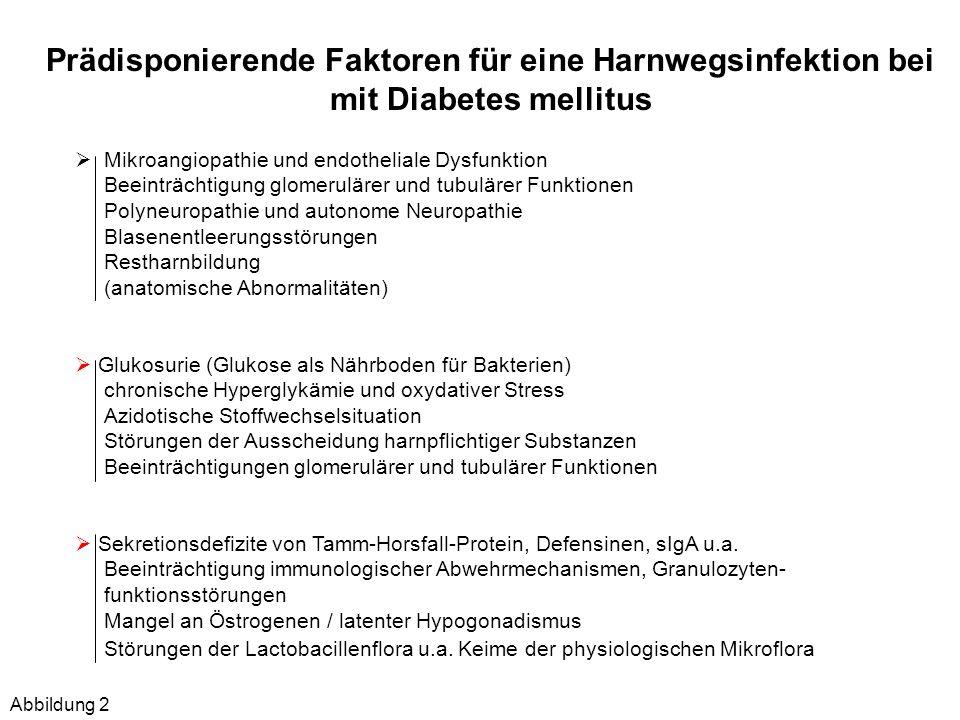 Prädisponierende Faktoren für eine Harnwegsinfektion bei