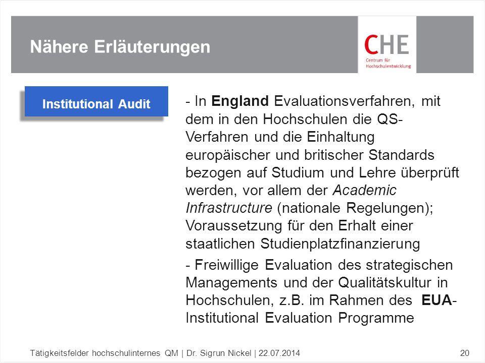 Nähere Erläuterungen Institutional Audit.
