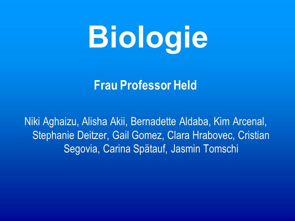 Biologie Frau Professor Held