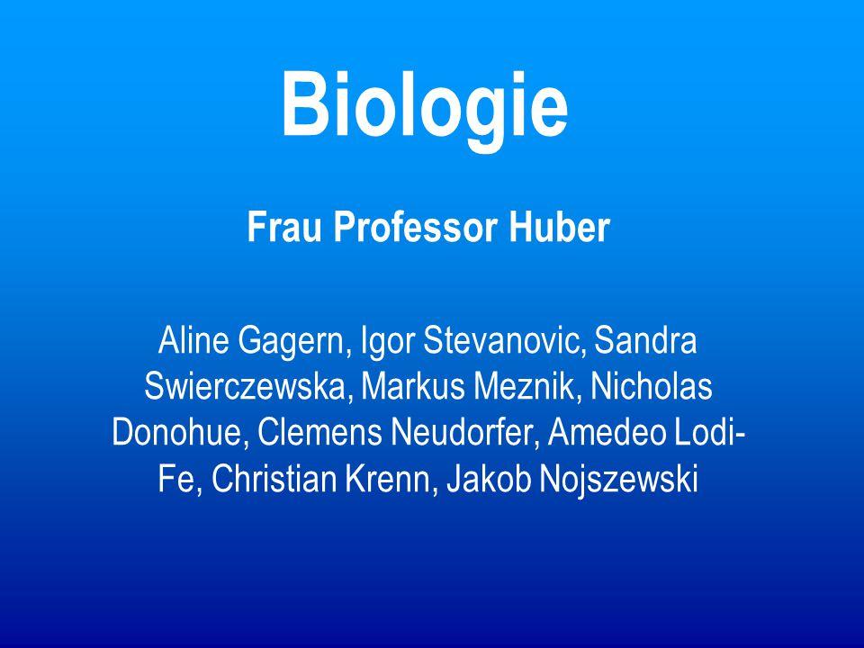 Biologie Frau Professor Huber
