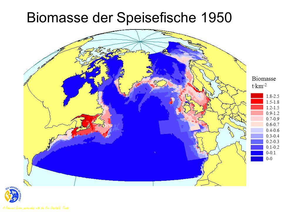 Biomasse der Speisefische 1950